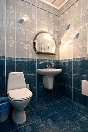 Санаторий Хорол Миргород Фото - Номер Люкс номер - Туалет.