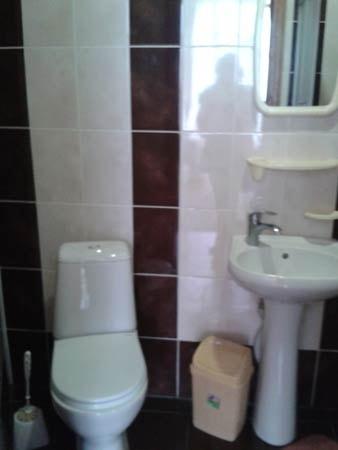 Санаторий имени Гоголя Фото - Номер двухместный стандарт - Туалет.