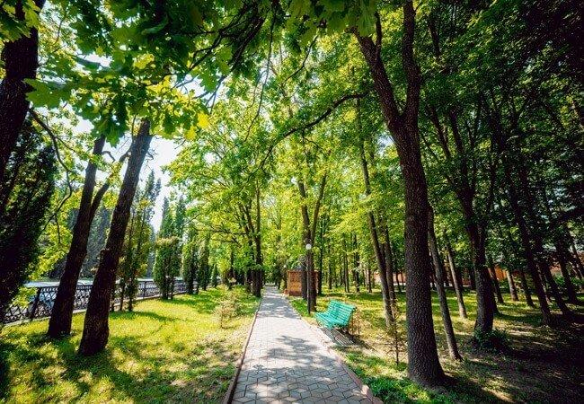 Санаторий Премиум Подолье Фото - Парковая Зона.
