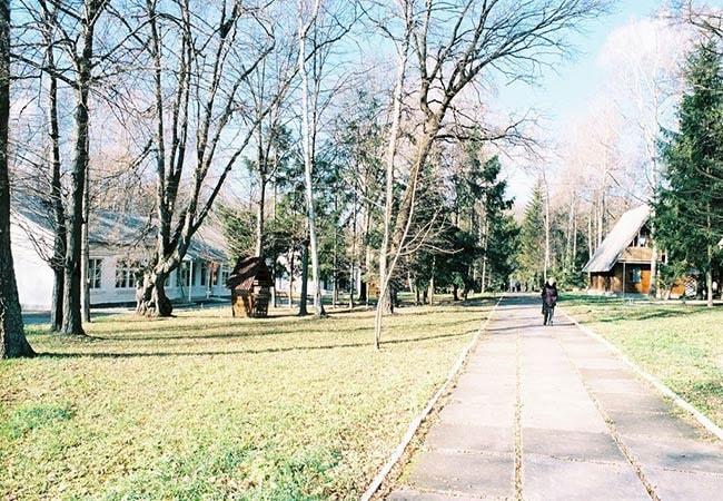 Санаторий Березовый Гай - Курорт Хмельник