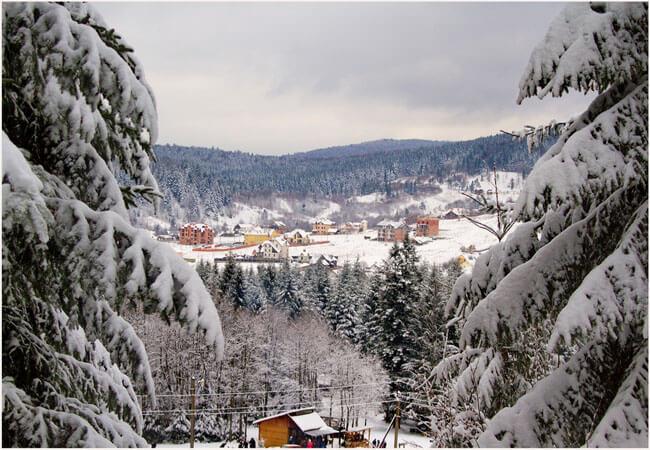 Фото - Сходница зимой