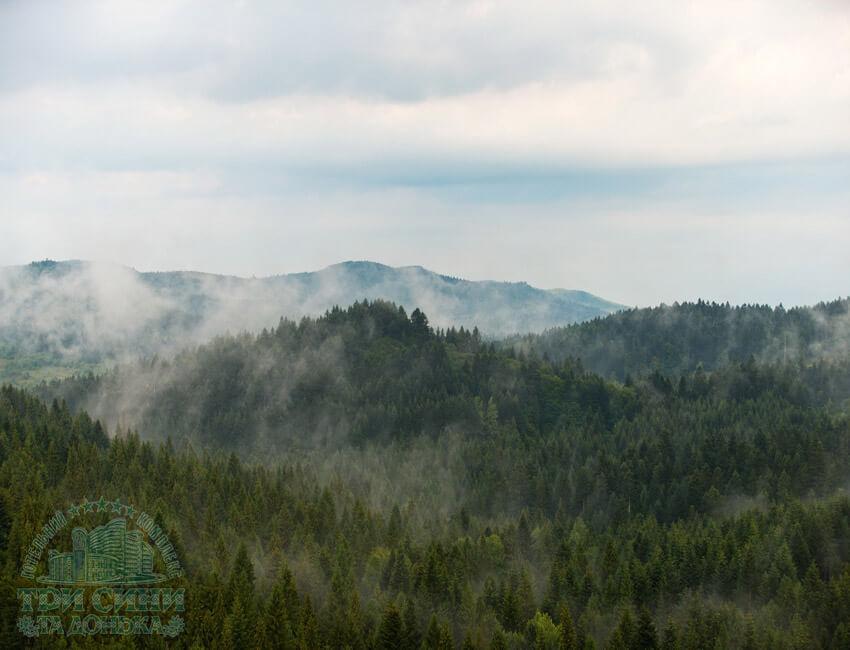 Отель Три Сына и Дочка 5* Фото - Горы и лес.