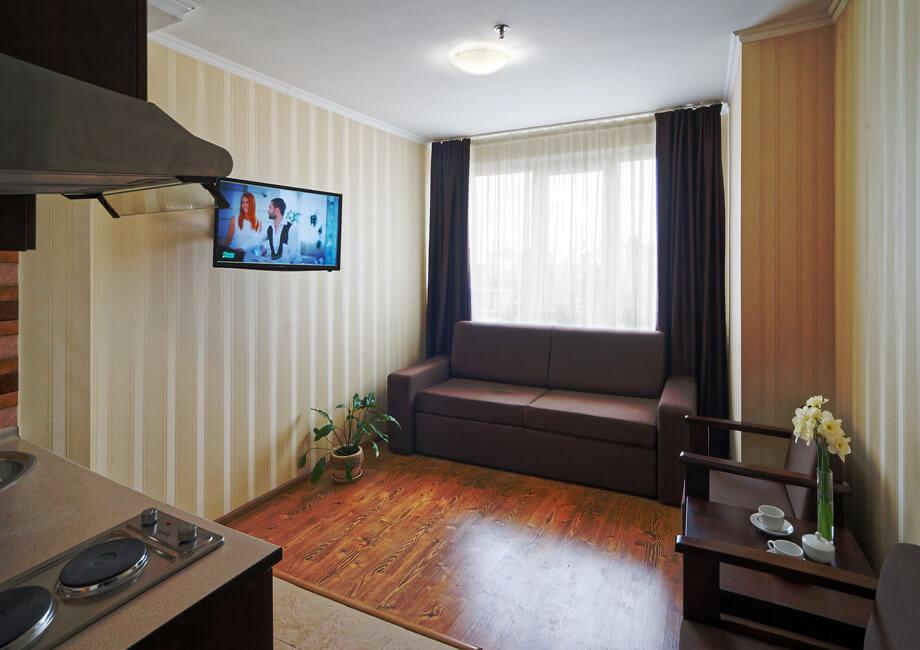Лесная Песня Трускавец Фото - Номер двухкомнатный апартамент - Диван.