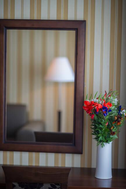 Лесная Песня Трускавец Фото - Номер люкс - Зеркало.
