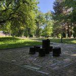 Санаторий Южный Трускавец Фото - пеньки.