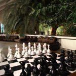 Санаторий Южный Трускавец Фото - шахматы.