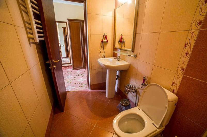 Женева Promenade Номер - DOUBLE/TWIN - Туалет.