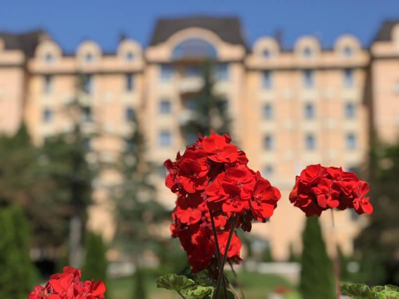 Санаторий Женева Трускавец Фото - Цветок.