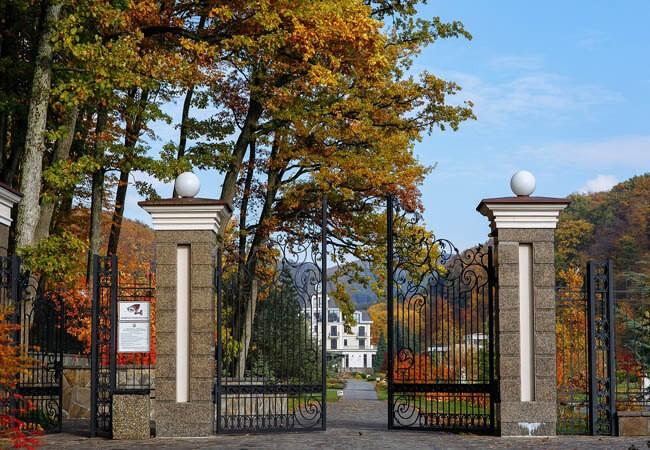 Деренивская Купель Фото - Ворота.