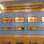 Санаторий Боржава Фото - Минеральные воды.