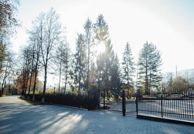 Санаторий Кришталеве джерело Фото - деревья