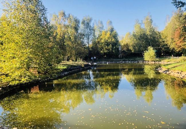 Санаторий Квитка Полонины - Озеро.