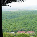 Санаторий Теплица Закарпатье Фото - вид с леса.