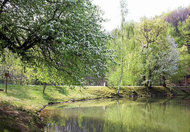 Санаторий Термал Стар на озере.
