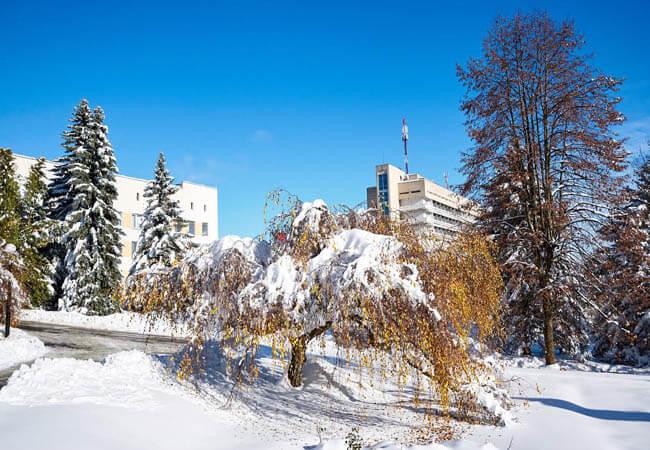 Санаторий Хрустальный Дворец Фото - Корпуса.