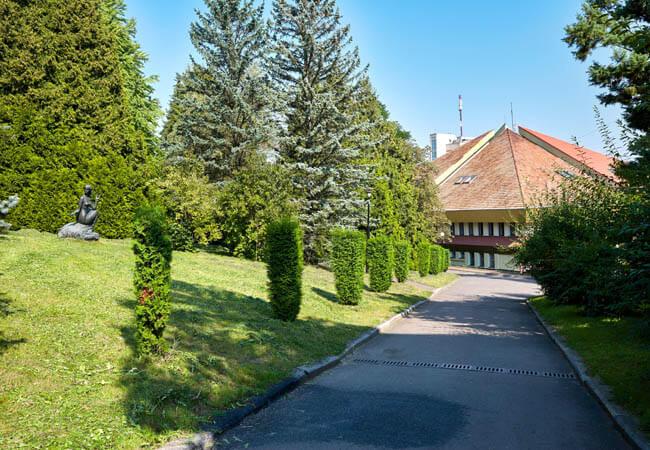 Санаторий Хрустальный Дворец Трускавец Фото - Дорожка.