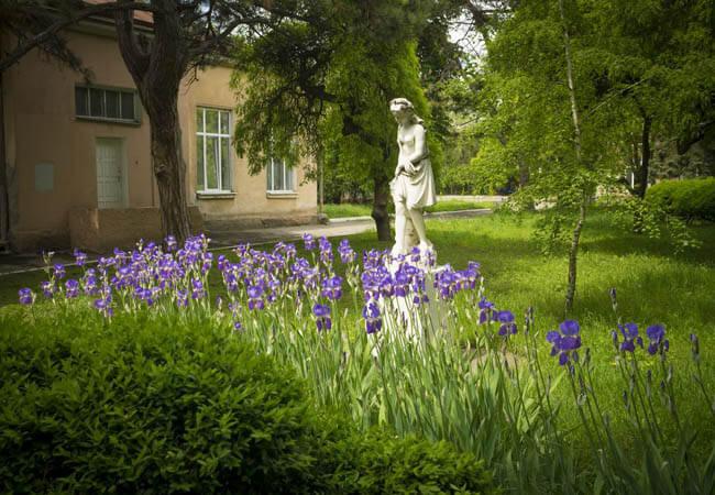 Санаторий Лермонтовский Одесса Фото - Статуя.
