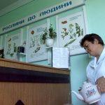 Санаторий Медоборы Фото - Врач.