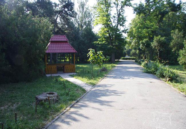 Санаторий Одесса Фото - Алея.