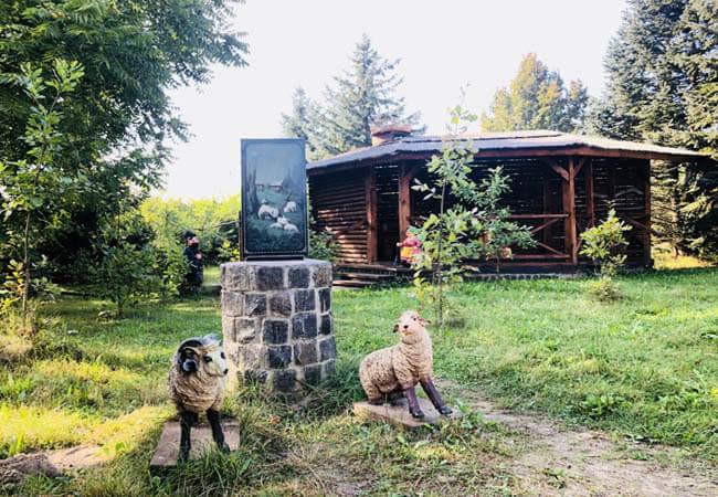 Санаторій Червона Калина - Барашки.