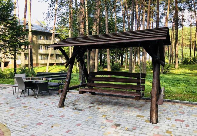 Санаторий Пролисок Фото - Качель.