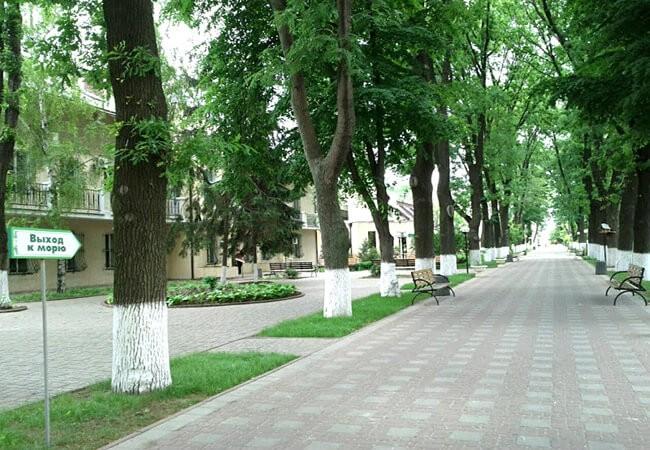 Санаторий Белая Акация - территория.