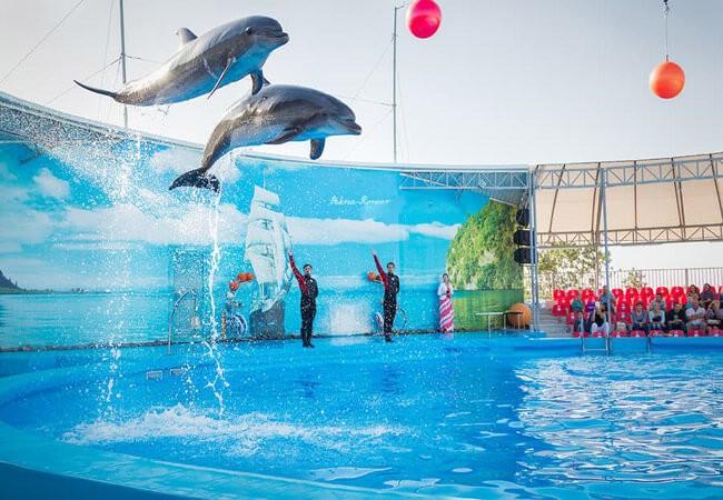 Дельфинарий в Бердянске