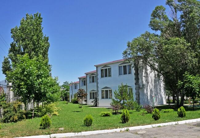 Санаторий Нефтехимик Бердянск - Клумба.