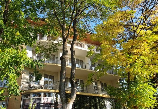 Отель Квеле Поляна - Деревья