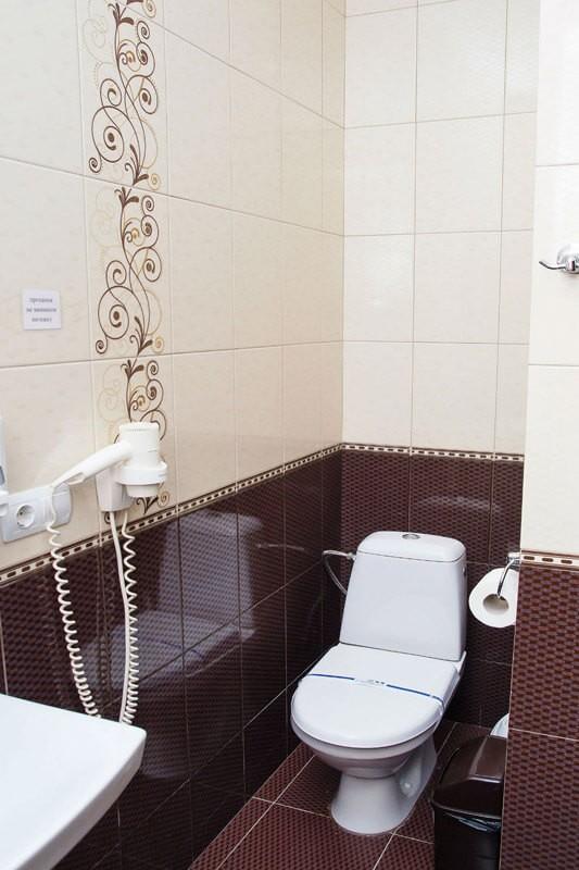 Отель Жаворонок Номер П.LX 3мест - Унитаз
