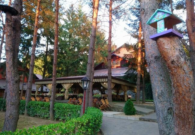 Отель Золотая Гора - Ресторан