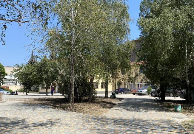 Санаторий Золотая Нива - Деревья